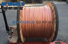 500平方软紫铜绞线