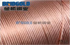 裸铜绞线每米重量1