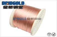 电刷铜绞线